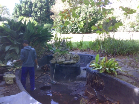 Water feature before 2.1